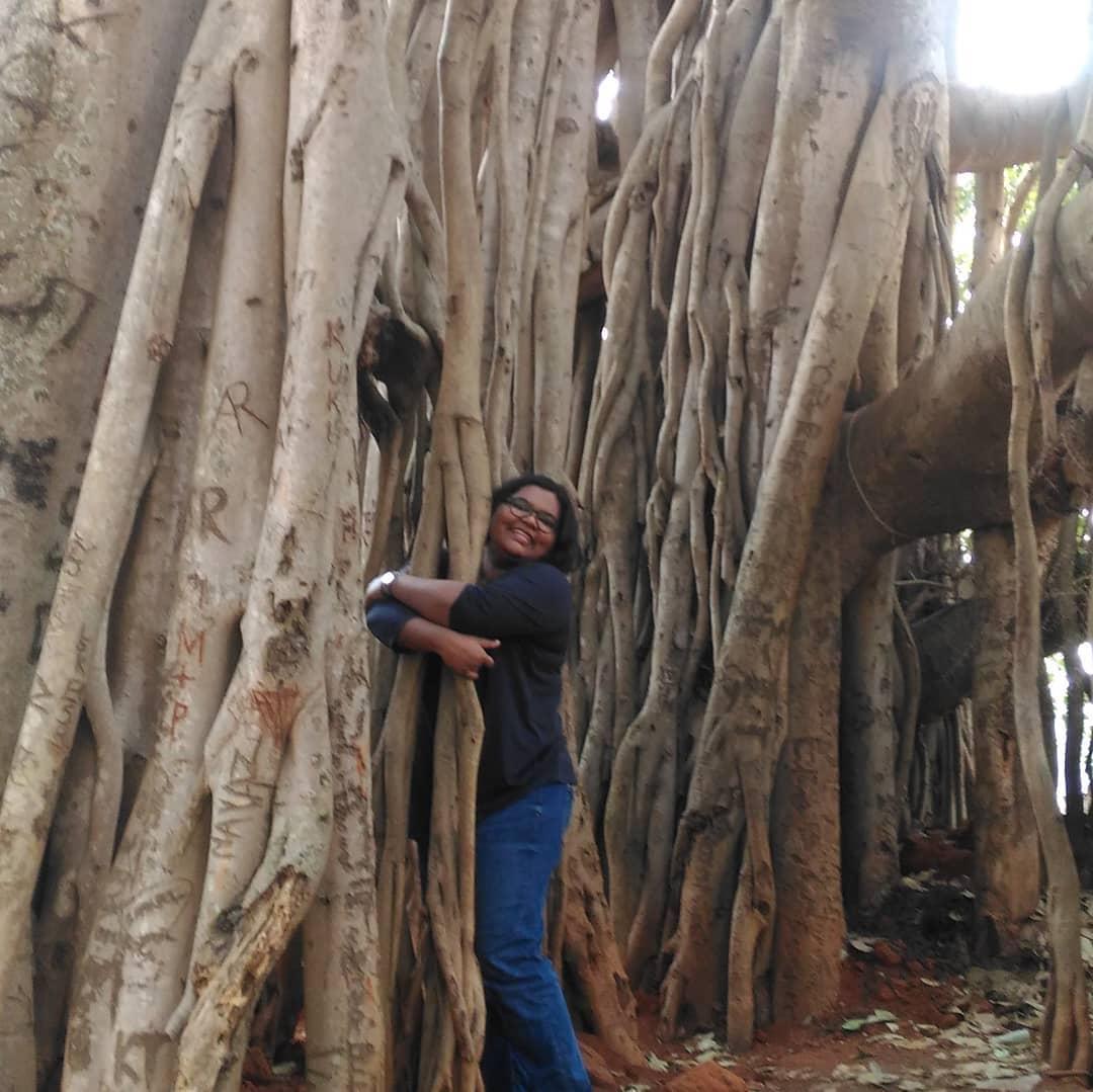Will hug any big tree